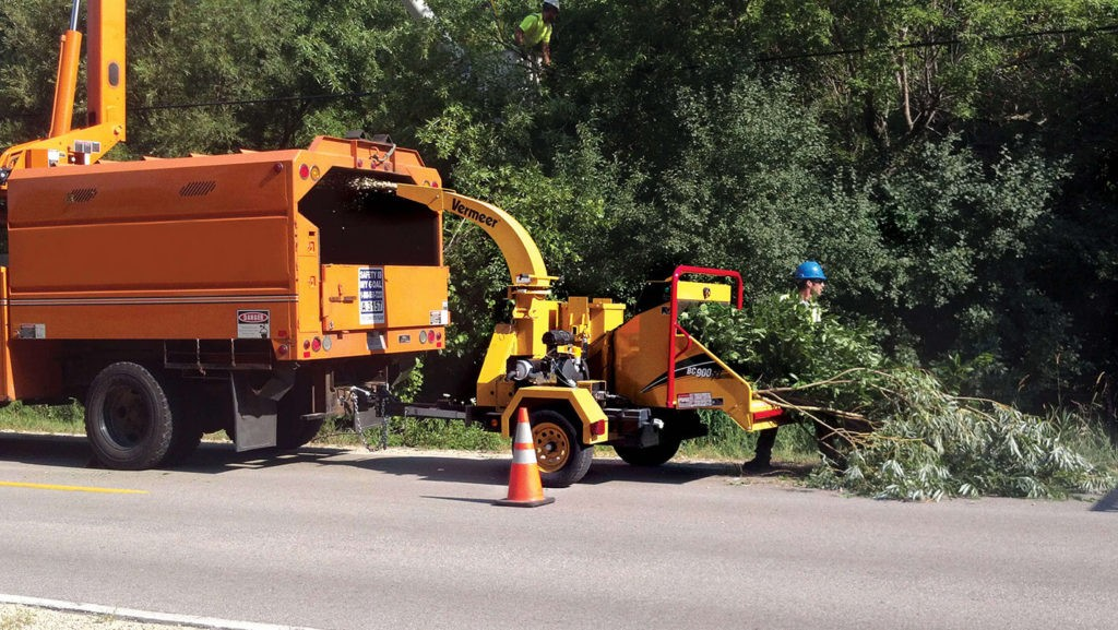 Commercial Tree Services-Key Biscayne FL Tree Trimming and Stump Grinding Services-We Offer Tree Trimming Services, Tree Removal, Tree Pruning, Tree Cutting, Residential and Commercial Tree Trimming Services, Storm Damage, Emergency Tree Removal, Land Clearing, Tree Companies, Tree Care Service, Stump Grinding, and we're the Best Tree Trimming Company Near You Guaranteed!
